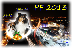 pf2013_2.png